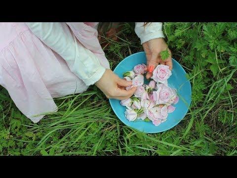 Гидролат розы  — рецепт приготовления в домашних условиях.