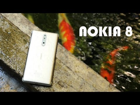 Nokia 8 Review (Cambo Report)