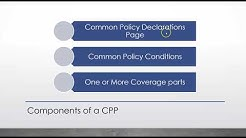 CPP Commercial Package Policy OVERVIEW