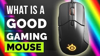 What is a GOOD GAMING MOUSE? SteelSeries Rival 310 review in Hindi