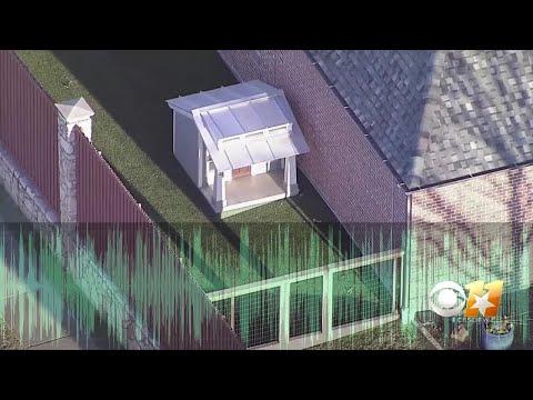 911 Audio: Neighbor Calls Police After Allegedly Bitten By Dak Prescott's Dog - Discretion Advised