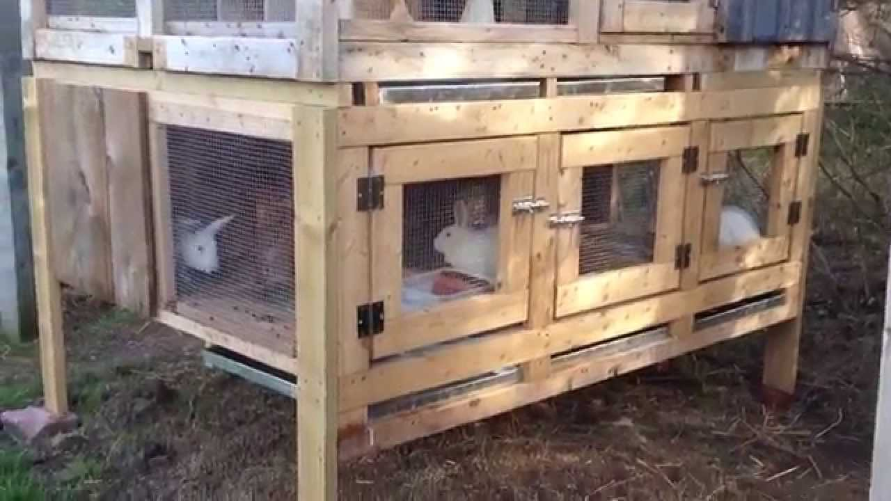 canadian rabbit hutch renovation part two youtube