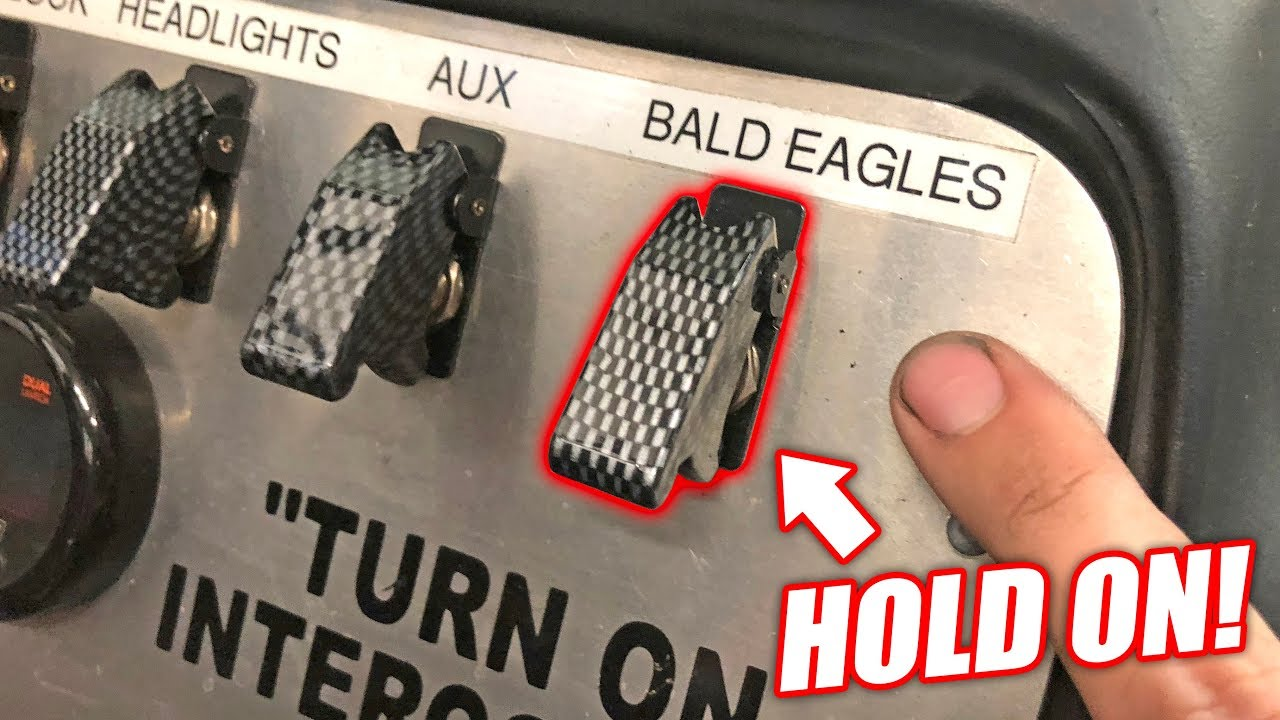 finally-putting-the-bald-eagles-switch-to-use-here-s-what-it-does