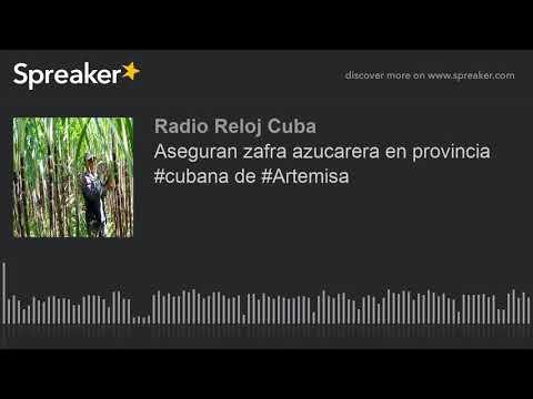 Video de Artemisa