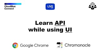 Learn CloudBlue Connect API while using Connect Portals