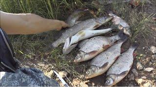 Big Fishing. Выпуск № 12. Супер рыбалка на Вятке.  День первый.