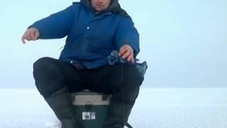 Зимняя рыбалка КВХ Окунь на блесну и балансир.