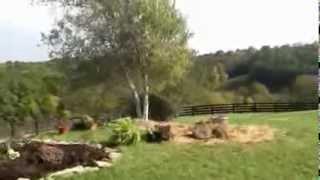 Farm Wedding Near Dry Ridge Kentucky