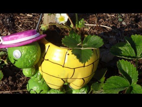 Смотреть онлайн МК Как Сделать Черепаху из Пластиковой Бутылки для Вашего Сада