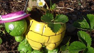 МК: Как Сделать Черепаху из Пластиковой Бутылки для Вашего Сада(Сегодня вы увидите, как можно приспособить пластиковую бутылку для дизайна вашего дома или дачи. Это просто..., 2015-06-15T23:27:53.000Z)