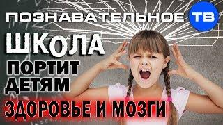 Система образования против здоровья детей. Часть 1 (Познавательное ТВ, Владимир Базарный)