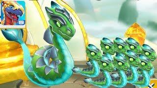Дракон Рентген Легенды Дракономании l Dragon Mania Legends 49