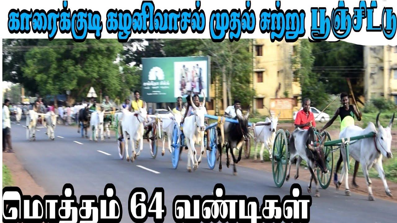 Download காரைக்குடி கழனிவாசல் முதல் சுற்று பூஞ்செட்டு பந்தையம் முடிவுகள் karaikudi rekla race TN 59JALLIKATTU