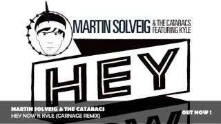 Martin Solveig & The Cataracs - Hey Now ft Kyle (Carnage Remix)