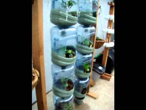 Bottle Garden Design 5 Gallon Youtube