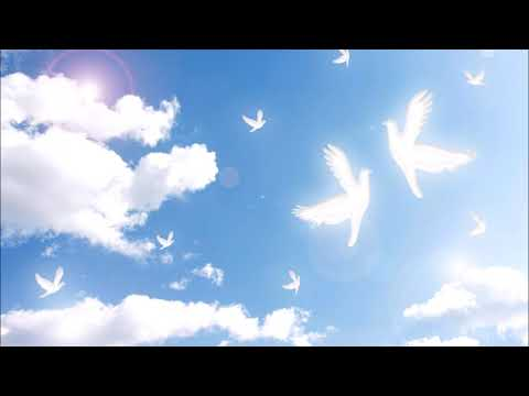 青空天使  八木美代子