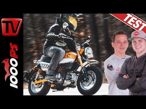 Honda Monkey 2019 - Fahrspass garantiert! Das Funbike im Test!