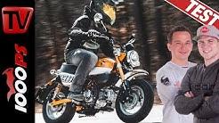Honda Monkey 2019 - Fahrspaß garantiert! Das Funbike im Test!