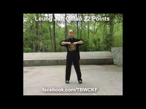 Wing Chun Nation  Leung Jan Wing Chun   22 Gu Lao Kulo Points @ipwcn108