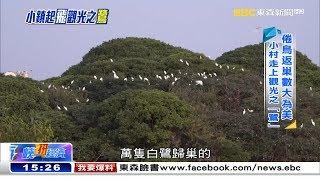 萬鳥歸巢蔚為奇觀 小村飄出咖啡香《海峽拚經濟》
