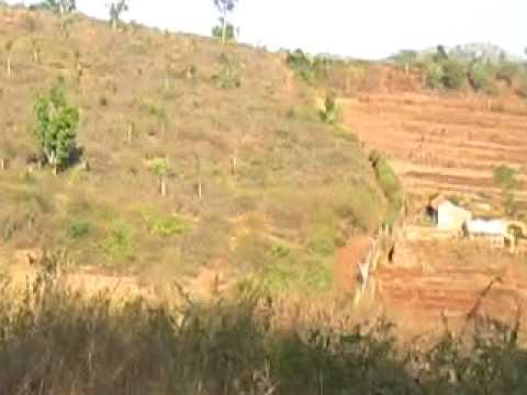 500 Acres Agriculture Land For Sale Udupa: 9901323456 Rs 5 Lack Per Acres