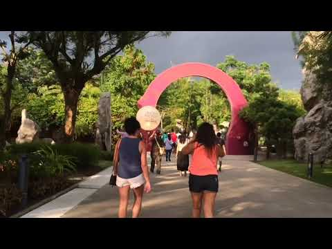Travel Singapore Part 48/50 | Singapore Video Collection | Road Trip | Day Trip | Discover Singapore