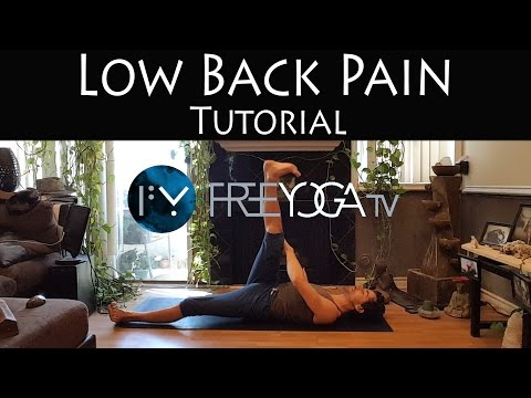 Low Back Pain, simple excercises, learn about causes and prevention | tutorial | Stephen Beitler