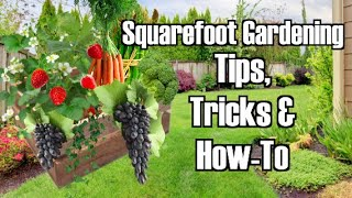 Square Foot Gardening: Tips, Tricks & How-To