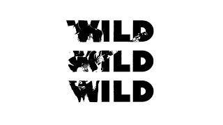 James Bay - Wild Love (Lyric Video)