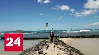 Ложная ракетная тревога на Гавайях: начато расследование, Трамп в курсе - Россия 24