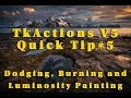 TKActions V5 Quick Tip #5: Dodging, Burning and Luminosity Painting
