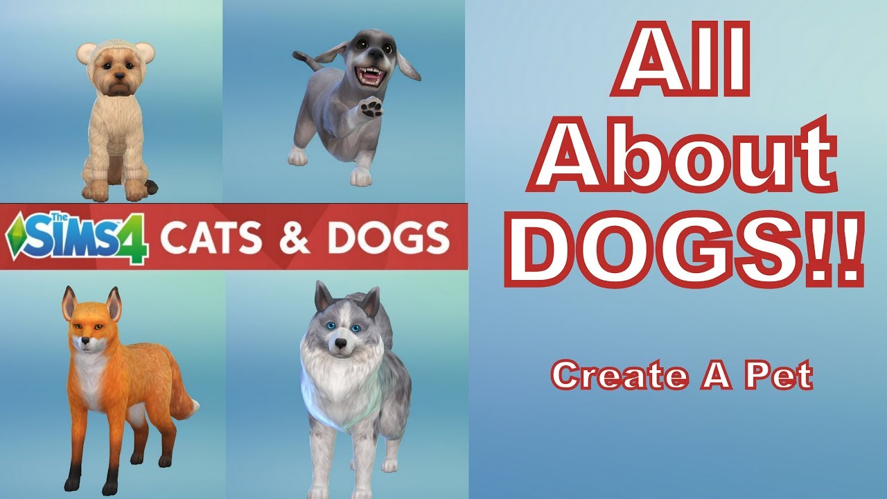 All About Dogs All Breeds Traits And More Sims 4 Cats And