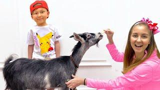 Senya and mom want new pets смотреть онлайн в хорошем качестве бесплатно - VIDEOOO