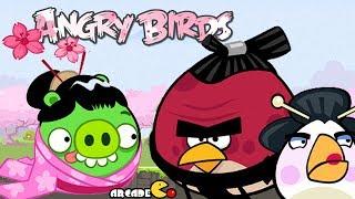 Angry Birds: Angry Birds Chrome Dimension Play - Angry Birds Ninja Cherry Blossom