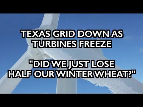 Texas Goes Dark - 45% US Wheat Damaged - Grand Solar Minimum