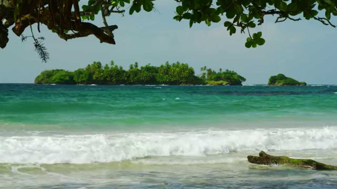 Red Frog Beach Island Resort Certified For Its: Vacation In Bocas Del Toro, Panama