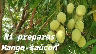 Ni preparas Mango-saŭcon 👍🇻🇪