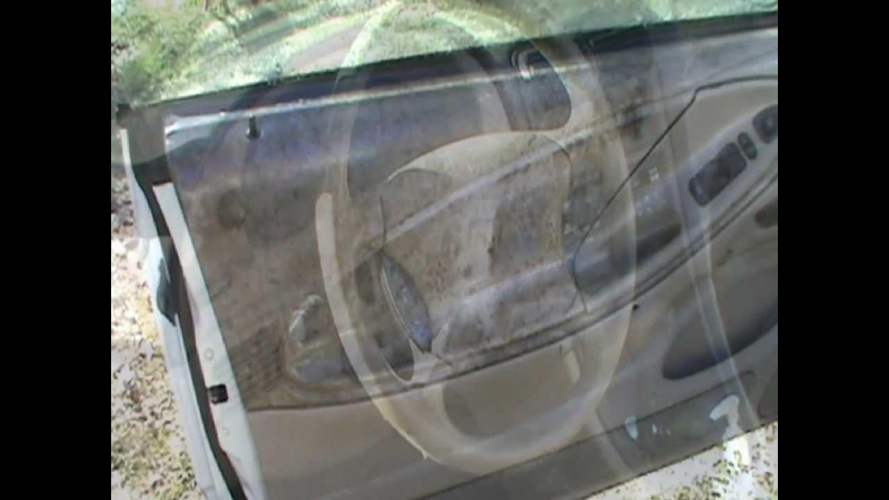 Mold In Car Interior