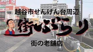 街ぶらり【越谷市せんげん台#1】ドSカメラマン 5スロ 中華