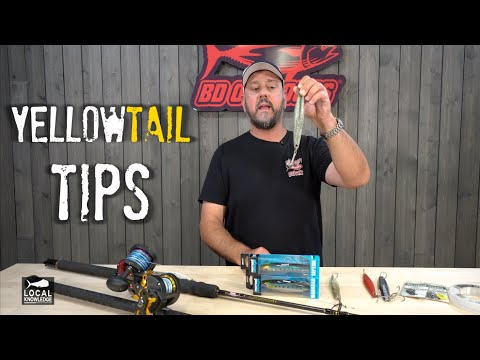 How To Catch YELLOWTAIL (Gear, Irons, Lures Explained!)