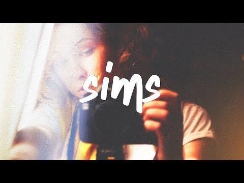 Lauv - Sims (Lyric Video)