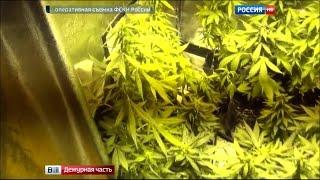 ФСКН выявила крупнейший интернет-магазин синтетических наркотиков(, 2015-09-30T13:42:44.000Z)