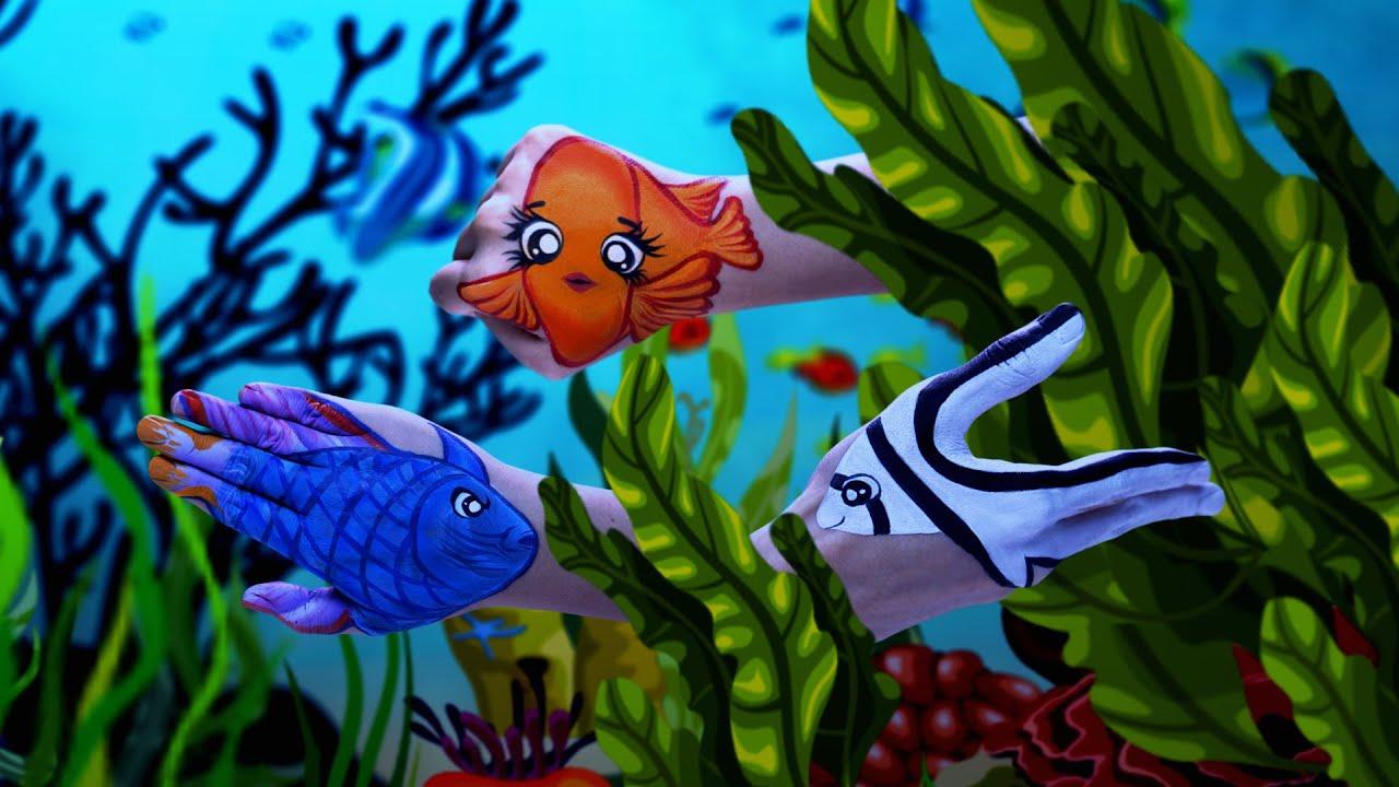 Fish aquarium in sentosa - Tropical Seafest At S E A Aquarium Resorts World Sentosa