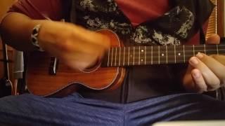 Amumu Solid Acacia Concert Ukulele 23 Inch #Music #Ukulele #Amumu