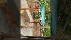Reliance township jamnagar