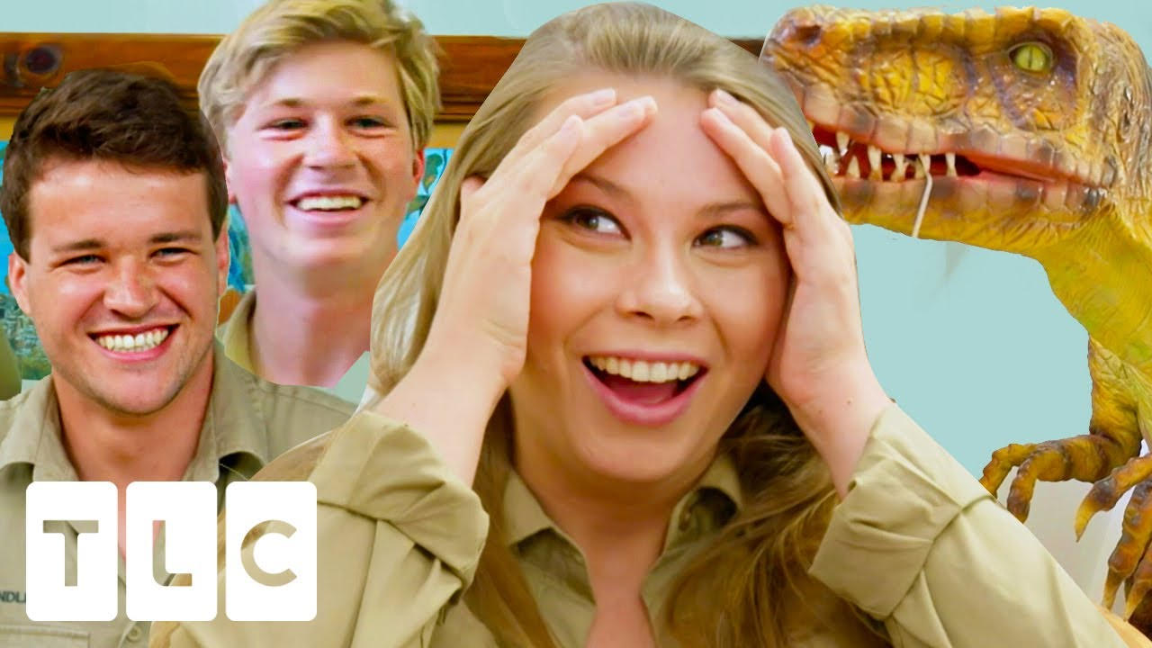 Robert's HILARIOUS Surprise for Bindi: A Very Unusual Baby Nursery   Crikey! It's a Baby