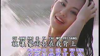 追风少年 Zhui Feng Shao Nian (辉歌 Victory Production - DVD版)