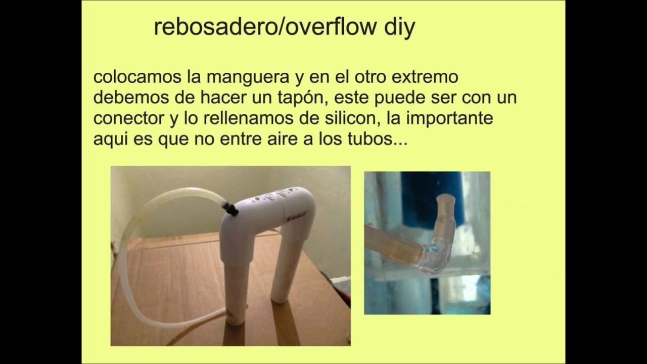 Rebosadero overflow diy funnydog tv for Diy dog bathing system