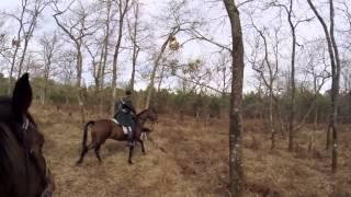 Rallie Touraine - Délire de chasse