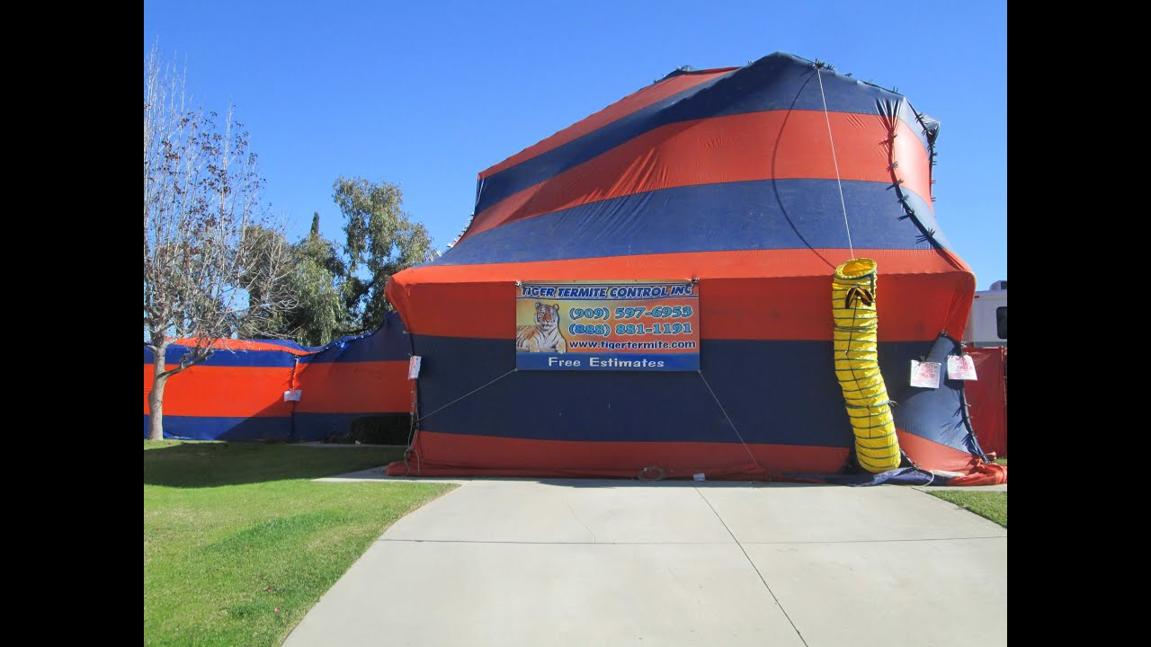 Tenting A House For Termites & TERMITE TENTING PILOT HOUSE ...